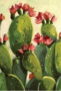 Cactus by Boho Hue Studio