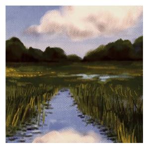 Marsh Wonder by Boho Hue Studio