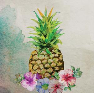 Pineapple by Boho Hue Studio