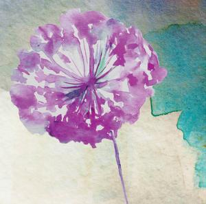 Purple Poof by Boho Hue Studio