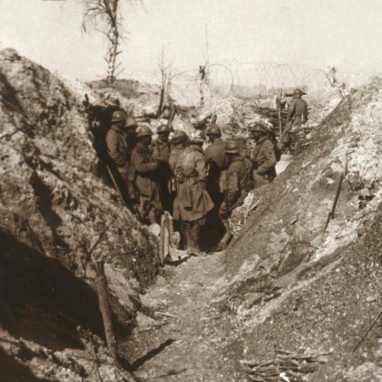 Bois de la Grille before attack, northern France, c1914-c1918-Unknown-Photographic Print