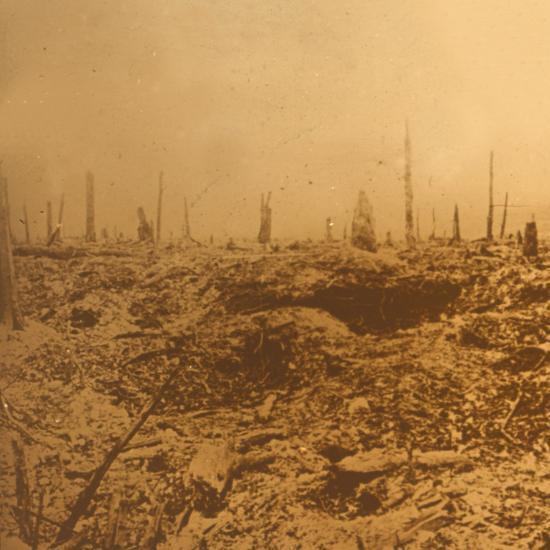 Bois du Chapitre, Vaux, northern France, c1914-c1918-Unknown-Photographic Print