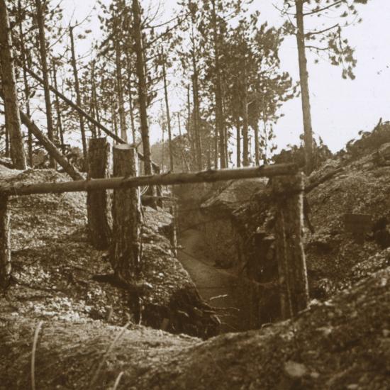 Bois-le-Prêtre, northern France, c1914-c1915-Unknown-Photographic Print