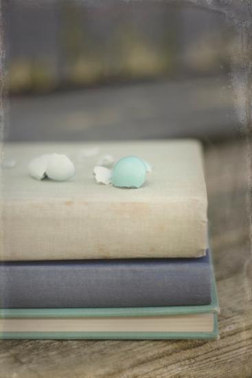 Boken Robin's Egg on Vintage Books-Elizabeth Urqhurt-Photographic Print
