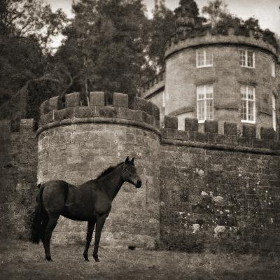 Bolesworth Horse-Pete Kelly-Giclee Print