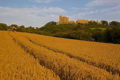 Bolsover Castle and Corn Field at Sunset, Bolsover, Derbyshire, England, United Kingdom, Europe-Frank Fell-Photographic Print