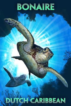 https://imgc.artprintimages.com/img/print/bonaire-dutch-caribbean-sea-turtle-diving_u-l-q1gq48u0.jpg?p=0