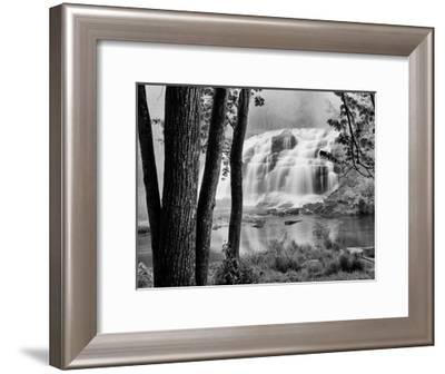 Bond Falls & Trees-Monte Nagler-Framed Giclee Print