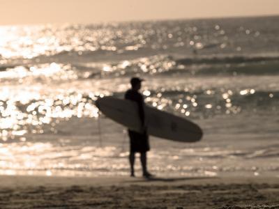 Bondi Beach, Sydney, New South Wales, Australia-Mark Mawson-Photographic Print