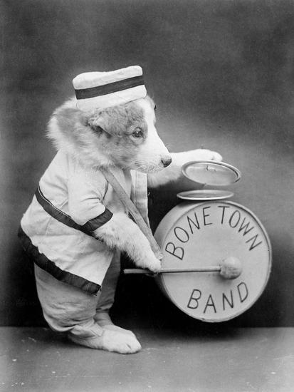 Bone Town Band--Photographic Print
