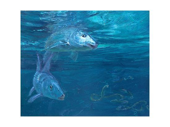 Bonefish Reflecting and Turning: a Bonefish Turns Idly in the Sun-Stanley Meltzoff-Giclee Print