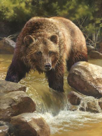 Grizzly at Roaring Creek by Bonnie Marris