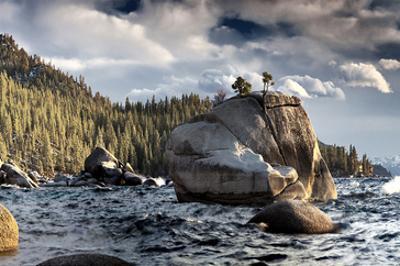 Bonsai Rock Lake Tahoe Nevada