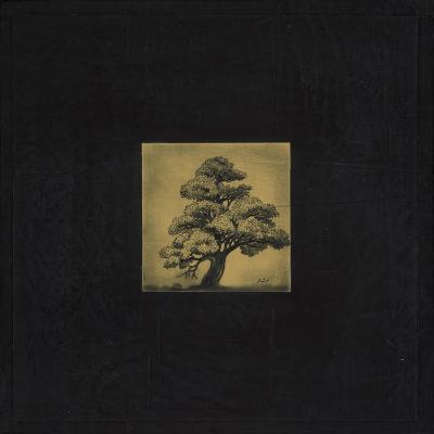 Bonsai Sacred Tree-OM-Premium Giclee Print