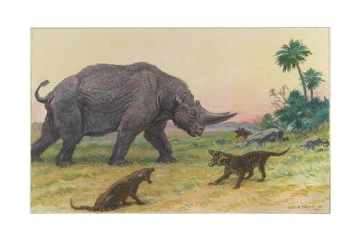 Bony Growths on the Arsinoitherium Protect it Against Hyaenodons-Charles R. Knight-Giclee Print