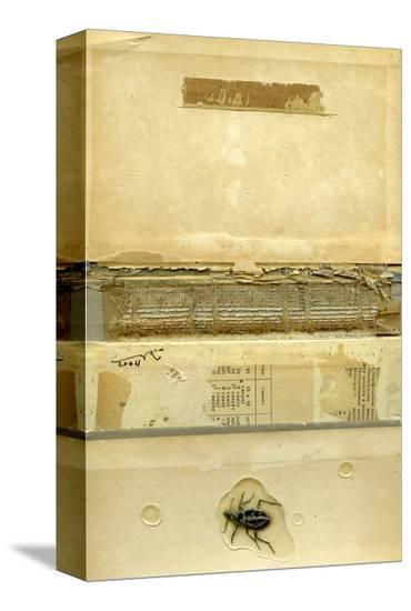 Book Cover 23-Qasim Sabti-Stretched Canvas Print