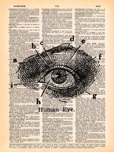 Human Eye by Book Dictionary Art