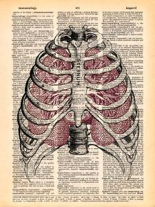 Sternum & Lungs by Book Dictionary Art