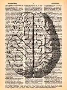The Brain by Book Dictionary Art
