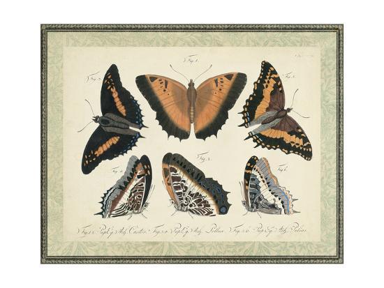 Bookplate Butterflies Trio I--Art Print