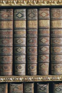 Books in Library of Benedictine Abbey of Melk, Wachau, Austria