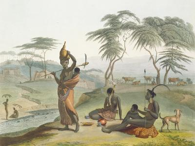Boosh Wannahs, Plate 8 from 'African Scenery and Animals', Engraved by the Artist, 1804 (Aquatint)-Samuel Daniell-Giclee Print