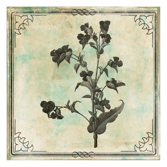 Bordered Stencil Floral Mate-Jace Grey-Art Print