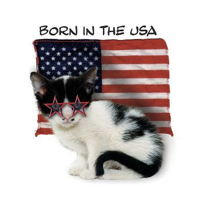 Born in USA--Giclee Print