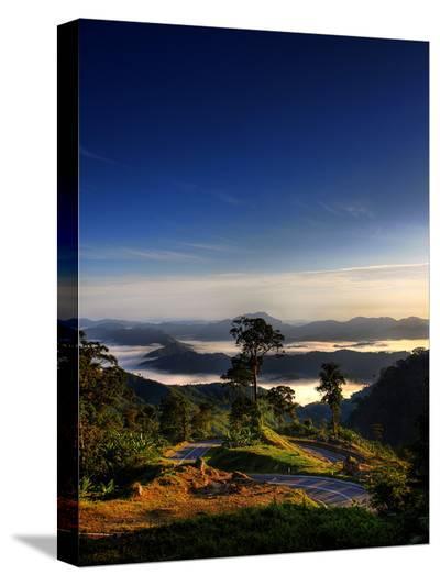 Borneo Curves-Dale MacMillan-Stretched Canvas Print