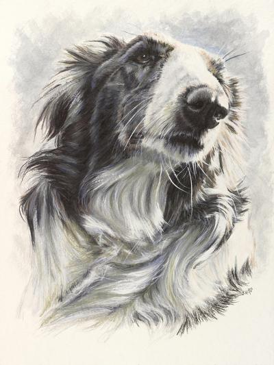 Borzoi-Barbara Keith-Giclee Print