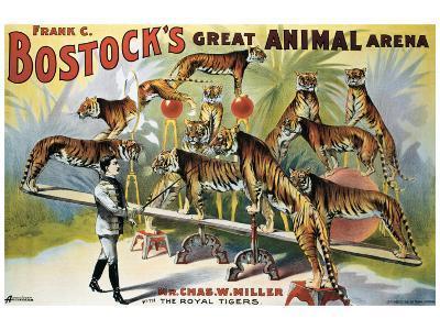 Bostock's Great Animal Arena--Giclee Print