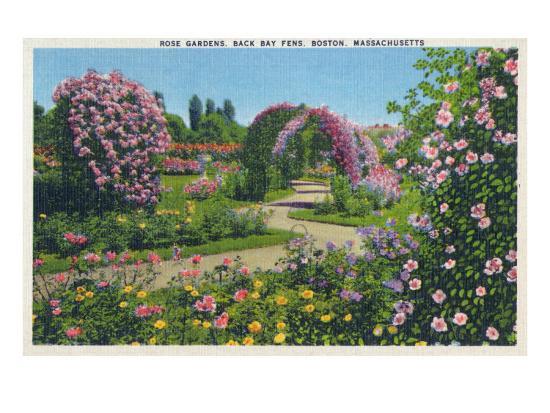 Boston, Massachusetts - Back Bay Fens and Rose Gardens View, c.1939-Lantern Press-Art Print