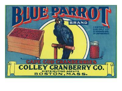Boston, Massachusetts, Blue Parrot Brand Cape Cod Cranberry Label-Lantern Press-Art Print
