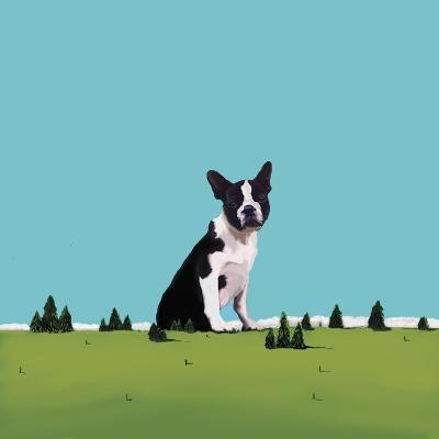 Boston Terrier, 2008-Marjorie Weiss-Giclee Print