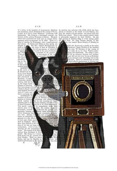 Boston Terrier Photographer-Fab Funky-Art Print
