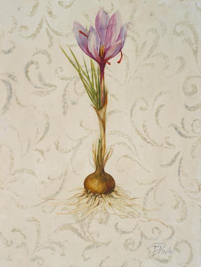 Botanica III-Patricia Pinto-Art Print
