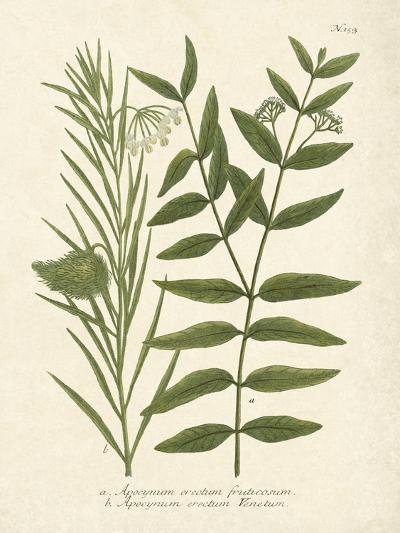 Botanica Indicum-The Vintage Collection-Art Print