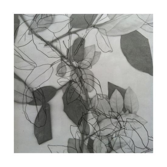 Botanical, 2014-Stephen Dow-Giclee Print