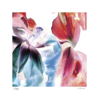 Botanical 4-Kate Blacklock-Limited Edition