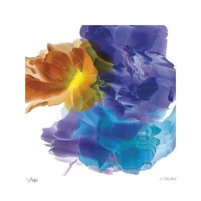 Botanical 7-Kate Blacklock-Limited Edition