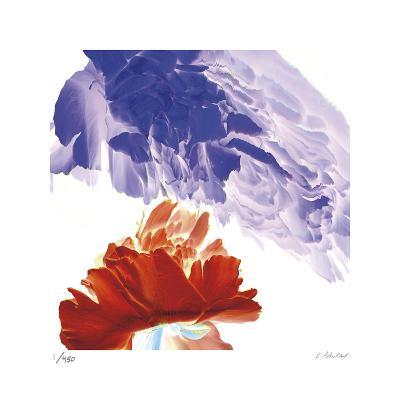 Botanical 9-Kate Blacklock-Limited Edition