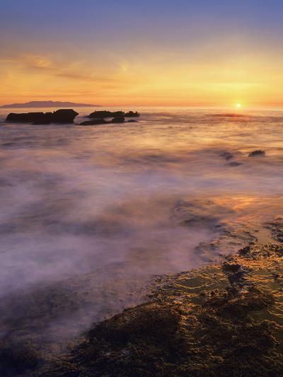 Botanical Beach, Vancouver Island, British Columbia, Canada-Tim Fitzharris-Photographic Print