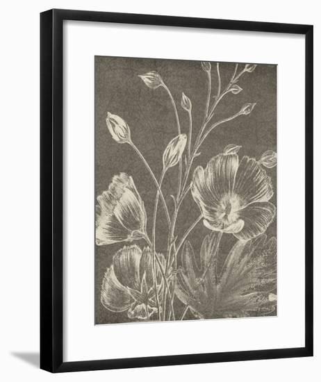 Botanical Beauty Chalk IX Crop-Wild Apple Portfolio-Framed Art Print