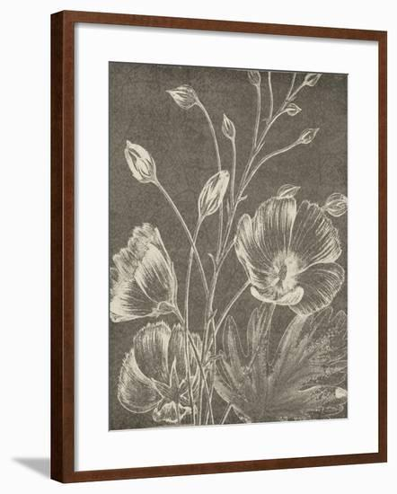 Botanical Beauty Chalk IX Crop-Wild Apple Portfolio-Framed Art Print