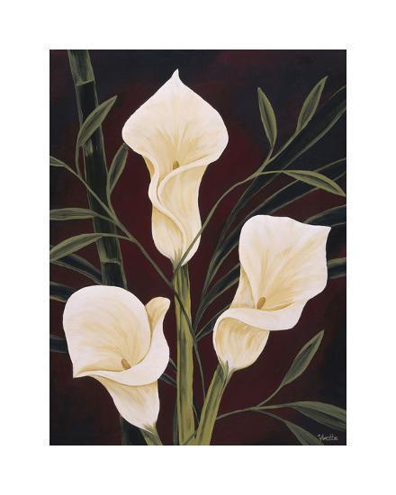Botanical Elegance II-Yvette St^ Amant-Giclee Print