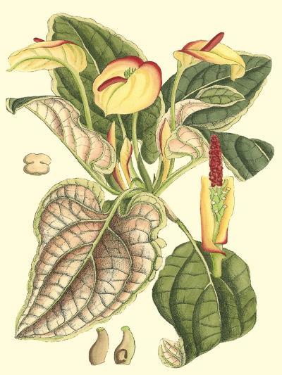 Botanical Fantasy III--Art Print