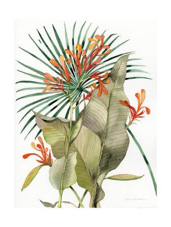 https://imgc.artprintimages.com/img/print/botanical-flame-lilies_u-l-q1b0rt50.jpg?p=0