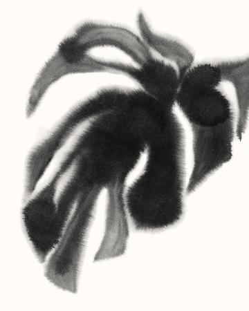 https://imgc.artprintimages.com/img/print/botanical-fuse_u-l-f971ll0.jpg?p=0