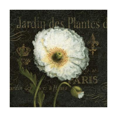 https://imgc.artprintimages.com/img/print/botanical-garden-i-borderless_u-l-py04wy0.jpg?p=0