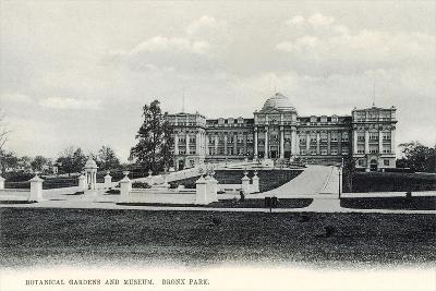Botanical Gardens and Museum, Bronx Park--Art Print